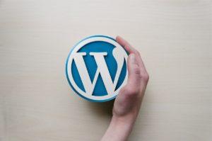 Wie sicher ist eine WordPress Lernplattform?